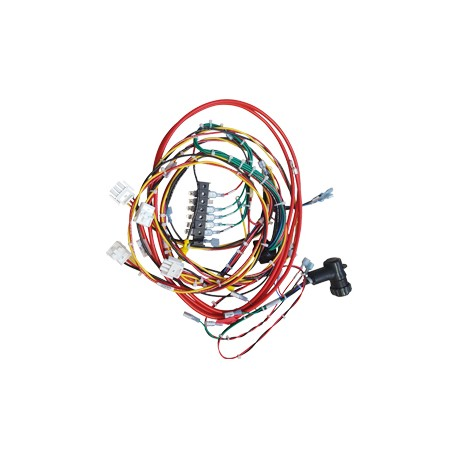 LEGENDS STANDARD WIRING HARNESS E0